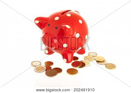 Red piggy bank with euro coins isolated over white background