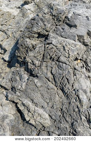 Clsoe-up of a natural grey Stone Texture of a Rock. Vierw on a massive Rock. Nature Background.