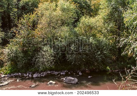 Muddy water with stones of the river Derbent among the trees occurring in the Lori region of Armenia
