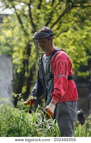 worker man with power tool string lawn trimmer mower cutting grass in garden closeup