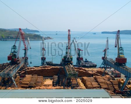 Timber Export At Vladivostok