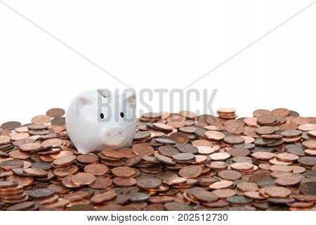 One small white piggy bank sitting on a landscape of old and new pennies isolated white. With the collapse of the zinc market the penny has become cheaper to make costing the taxpayer much less.