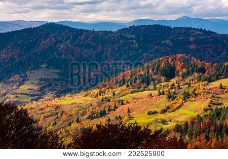 Rural Fields On Hills Among The Forest In Autumn