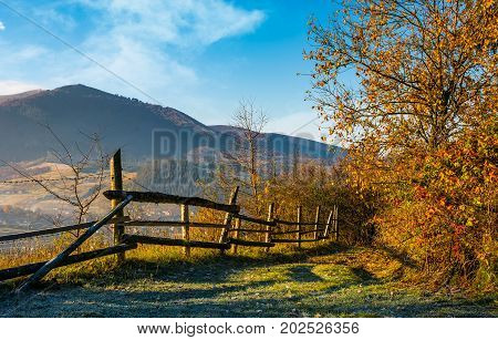 Wooden Fence Near Forest In Mountains