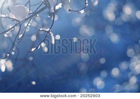 winter (deliberate use of very shallow depth of field)
