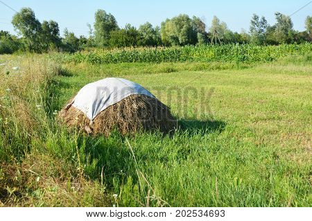 Traditional hay stack. Hay Stack in the Countryside Field.