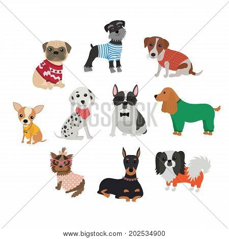 Set of different breeds of dogs in clothing and accessories. Funny cartoon dog. Furry human friends cute animals. Flat vector illustration isolated on white background