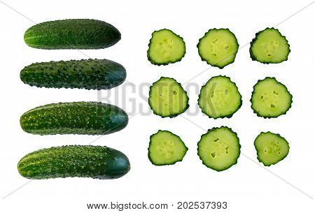 Collection Of Fresh Cucumber Slices Isolated