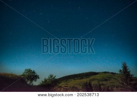 Dark Blue Night Sky With A Tree