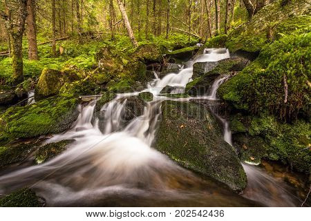 A small waterfall in a green forest with water, rocks, moss and ferns, Norway