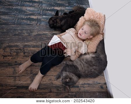 small child with a book. Girl lying on the floor. Next a cat and a dog