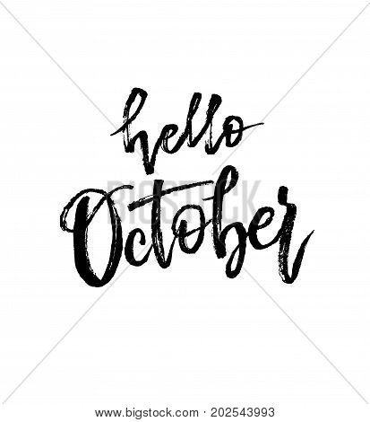 Hello October. Autumn brush lettering. Fall greteng cards, banners, autumn season phrase for posters design. Handwritten modern brush pen calligraphy isolated. Vector illustration stock vector.