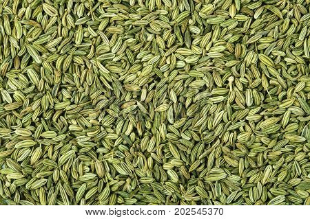 close up the fennel seed texture background
