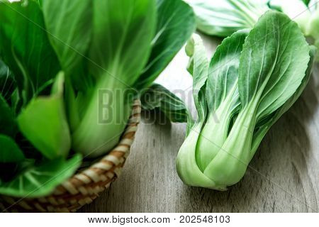 close up Fresh baby green bok choy