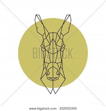 Geometric head of donkey. Design vector illustration.