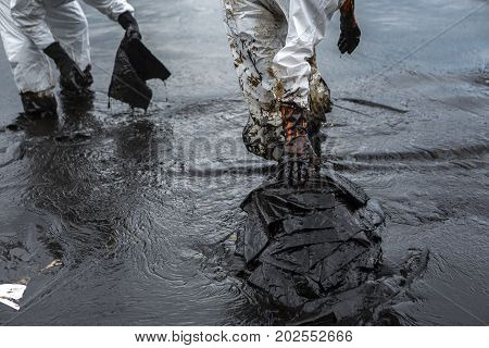 Workers remove and clean up crude oil spilled with absorbent paper from Prao Bay on July 31 2013 in Samet Island Rayong Thailand