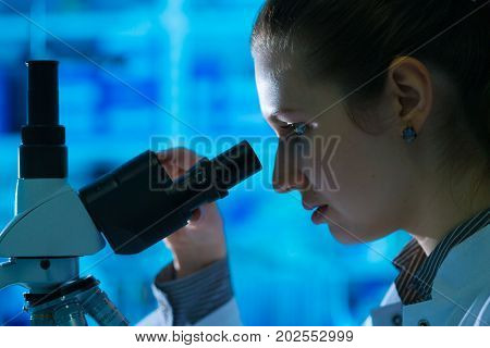 Young scientist studying Pathological microorganism  in microscope