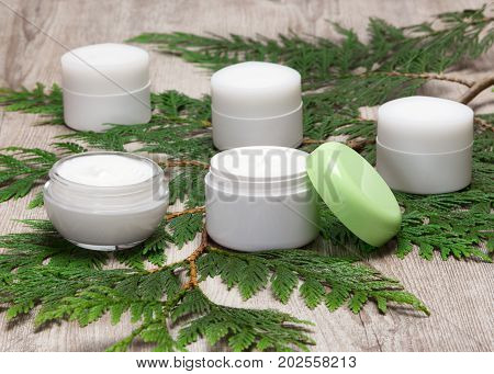 Several Jars Of Cream On Green Plant Branch