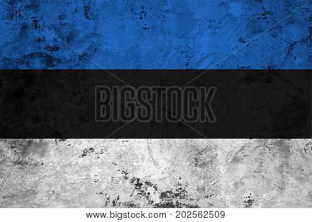 Flag of the Estonia against the background of the stone texture