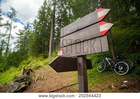 empty trail sign forest wood mountain bike