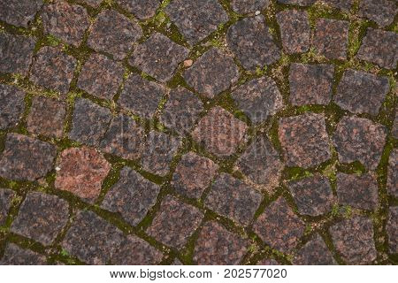paving stone in fortress of Saint Petersburg texture