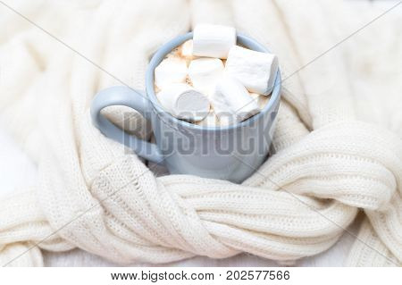 a cup of hot chocolate and marshmallows wrapped in a knitted sweater
