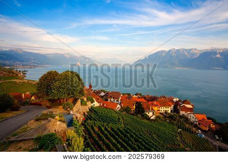 Vineyards of the Lavaux region over lake Leman (lake of Geneva)Switzerland HDR Image.