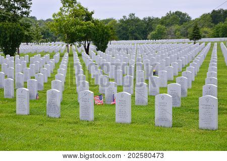 A Small American Flag Honors The Gravesite Of A World War Ii Veterans.