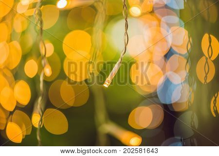 Led Lights Garland, Colorful Light Bulbs On A Bokeh Background