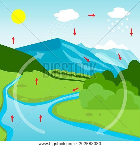 Water Cycle Diagram. Vector illustration flat design poster