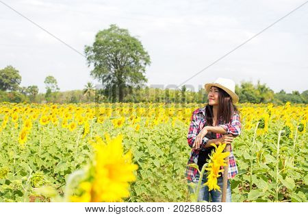 Farmers women working in a field of sunflowers. Lifestyle Concept.