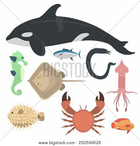 Vector set of cute sea animals creatures characters. Cartoon ocean underwater aquarium life water collection graphic aquatic tropical beasts