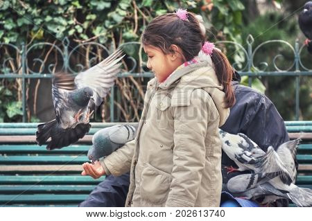 France, Paris - March 2008: Pigeon landing on the girl's hand for feeding. Parvis Notre Dame - Place Jean-Paul II. France. Paris