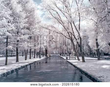 MOSCOW RUSSIA - July 15.2011: Infrared photography. Summer. Alley in the park