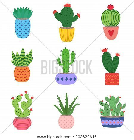 Cactus and succulent plants in pots. Illustration set of hand drawn cacti and succulents growing in cute little pots. Simple cartoon vector style.