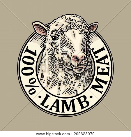 Sheep head. 100 percent lamb meat lettering. Hand drawn in a graphic style. Vintage color vector engraving illustration for label poster logotype. Isolated on gray background