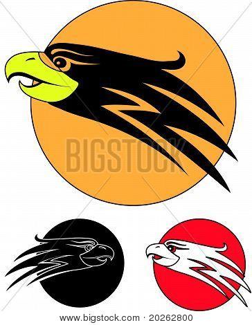 Egle bird