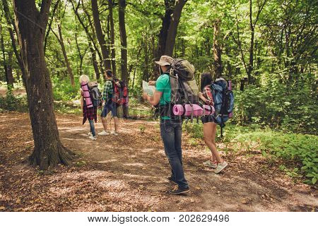 Rear View Of Four Best Friends, Walking In Autumn  Forest, Amazed By The Beauty Of Nature, Wearing C