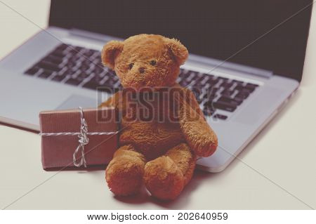 Beautiful Small Gift, Cute Teddy Bear And Cool Laptop On The Wonderful Pink Background