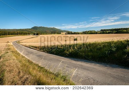 Sloping acres with mountain views in the department of dreams near the city of Valence in France