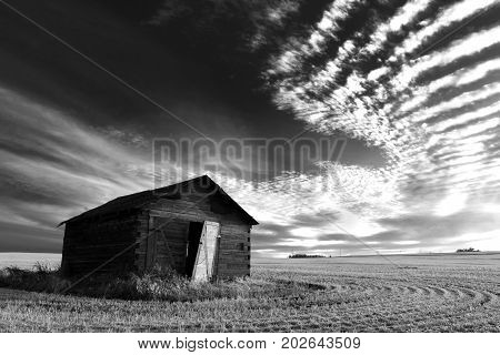 A black and white image of a single run down granary in on the Alberta prairies.