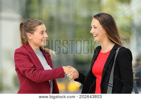 Two Executives Meeting And Handshaking On The Street