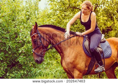Animal horse riding concept. Young woman sitting on horse and stroking its fringe