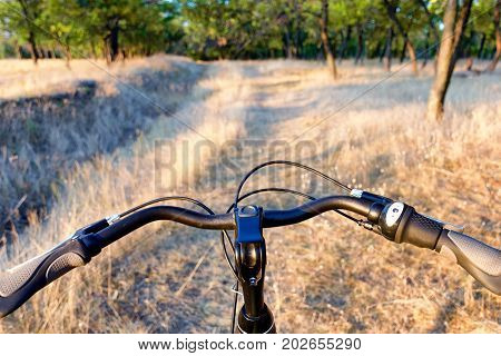 Bicycle Handlebar On The Off-road And Dry Autumn Grass