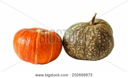 Two pumpkins orange and green isolated on white background