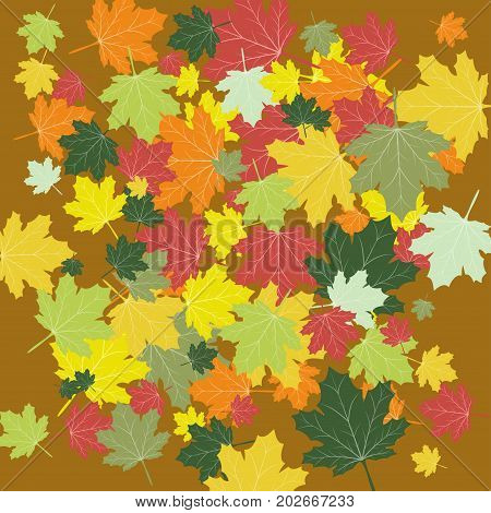 Autumn background, colorful leaves on a brown background, vector illustration