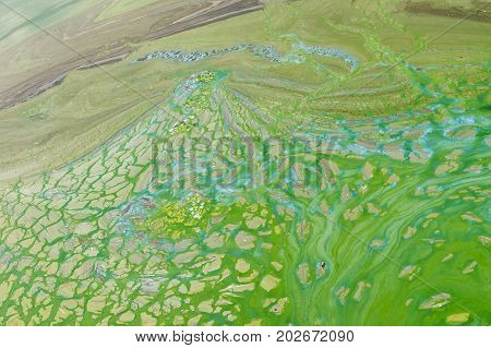 Abstract natural patterns on Ukrainian river Dnepr covered by cyanobacterias as a result of phytoplankton evolution in hot seasons