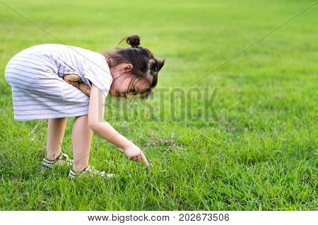 Cute girl find something in the green fields.Kid play with teddy bear toy.Selective focus with copy space.Health an education concept.