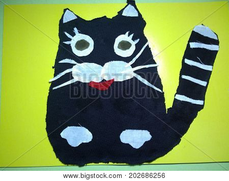 Children's tissue application depicting the figure of a black cat