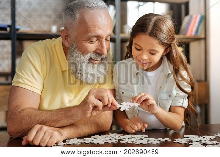 Serene family. Cute pre-teen girl sitting at the table next to her grandfather and assembling jigsaw puzzle together with him while smiling happily